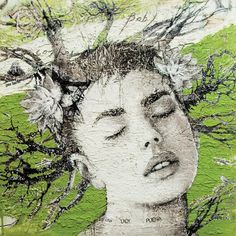 http://www.monicaleonardo.com/files/gimgs/12_canzone-verde-monica-leonardo.jpg