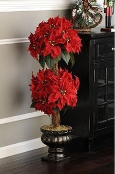 Nice 40+ Poinsettia Plant Decor Front Porches_29