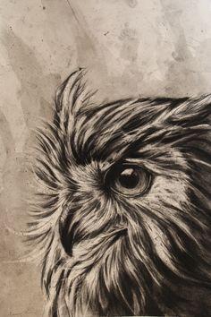 Alexander Landerman ~ Owl (charcoal, graphite)