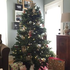 Our tree… Dec. 2015!
