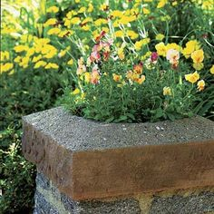 Instead of installing a light atop your driveway entrance pillar, think about a planter that lets you brighten the site with flowers and foliage. | Photo: Mathew Benson | thisoldhouse.com