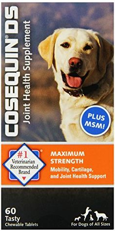 Nutramax Cosequin DS Chewables Plus MSM 60ct - CONTINUE @ http://www.cjbless.com/store/nutramax-cosequin-ds-chewables-plus-msm-60ct/?a=0808