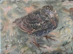 WinterStarling   ©2017LSAuth  oil on canvas
