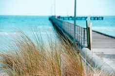 Melbourne Beach, Beaches In The World, Rye, Strand, Railroad Tracks, Swimming, Backyard, Spaces, Explore