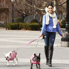 Vanessa Hudgens and French bulldogs, Bella and Lilly