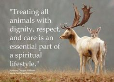 Respecting ALL relations... <3