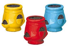 Blooms Strawberry Pot and Planter (Set of 3)