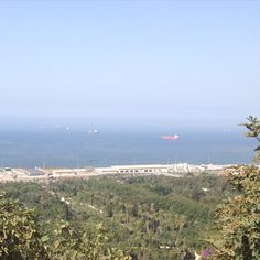 Panorama from near Monument of central Algiers