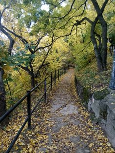 A walkway on Gellért hill in autumn.