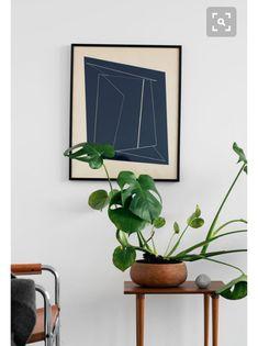 요즘 인테리어에서 빼놓을 수 없는게 식물이죠~~~ 식물이 집안에 있으면 싱그럽고 뭔가 더 멋스러운 연출도...