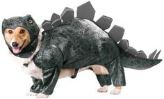 A plated prehistoric pet. Stegosaurus costume includes foam headpiece and padded green jumpsuit with attached spinal plates and tail.