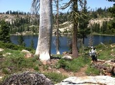 11 Amazing Northern California Hikes Under 2 Miles You'll Absolutely Love
