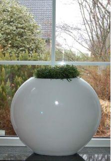 Bloempot Bonaire small white VTW De Bonaire is een een prachtige grote ovale pot. Verkrijgbaar in 2 maten. Het gebruikte materiaal is Fiberstone (mengsel van polyester, gemalen graniet en fiberglas), dit maakt de pot supersterk en niet zwaar, maar zorgt wel voor een natuurlijke uitstraling. De schitterende glanslaag ontstaat door bewerking met meerdere lagen verf. Deze glanslaag geeft de potten een zeer exclusieve en trendy uitstraling. Lichtgewicht en vorstbestendig. De gehele fiberst...