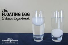 Floating & Sinking Pop Cans Science Experiment VIdeo Science Projects For Kids, Easy Science Experiments, Science Facts, Science For Kids, Science Activities, Floating Eggs, Das Experiment, Sink Or Float, Chemistry Lessons