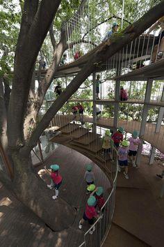 Fun Playground Hoops Around a Tree - Wave Avenue