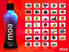 MOA Super Bebida. É uma bebida única que inclui superfrutos selecionados pelas suas propriedades, sendo em alguns deles incluída a casca como parte do puré nutritivo, e na forma mais bio disponível para uma absorção orgânica ideal.