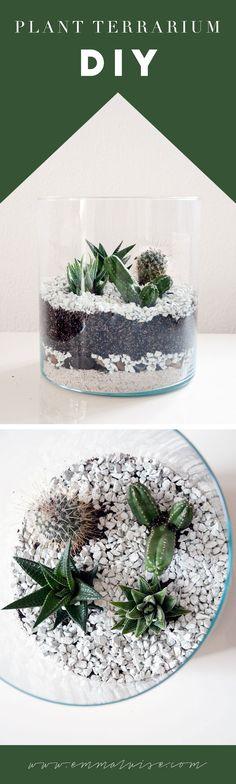 DIY: Kaktus Terrarium www.emmaluise.com