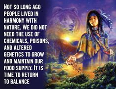 Not so long ago people lived in harmony with nature. We did not need the use of chemicals, poisons, and altered genetics to grow and maintain our food supply. It is time to return to balance. Native American Wisdom, Native American Indians, Native Americans, Mother Earth, Mother Nature, Native Quotes, Ocean Acidification, Eastern Medicine, Collective Consciousness