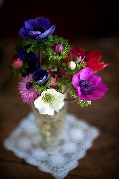 .so pretty are the petals.