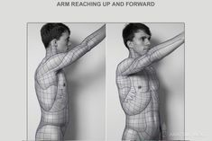 Anatomy Next - Anatomy of Torso: Block-outs
