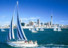 New Zealand with my fav kiwi! ❤️ dec/jan