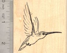 Hummingbird Rubber Stamp *** You can get more details by clicking on the image.