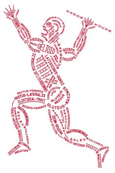 Image of Muscular Typogram - PDF File