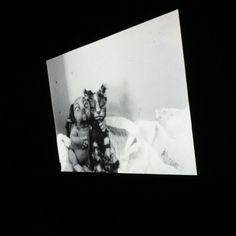 #CCCB, МЕТАМОРФОЗЫ. Мультфильмы, что повлияли на многих современных, культовых режиссеров
