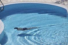 4 + 1 Bedroom Villa in Plaka area in Naxos! Proud member of Naxos Premium Greek Islands, Breeze, Swimming Pools, Aqua, Waves, Outdoor, Bedroom, Greek Isles, Outdoors