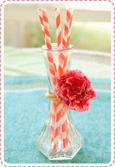 Adorable way to show off your straws!!!
