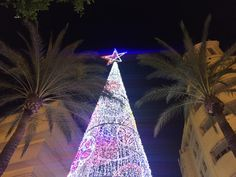 In old Jerez town and the zambombas are in full swing. Read more here. Cadiz, Andalucia, Saturday Night, Christmas Lights, Tower, Christmas Fairy Lights, Rook, Computer Case, Building