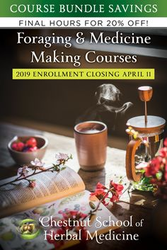 *Last call! Our Foraging & Medicine Making COURSE BUNDLE is closing its gates until 2020!*  Take *20% off* your tuition until April 11th!!  Join us for a wild food + medicine adventure in plant paradise. The course features:  🌼 Beautiful & engaging video instruction 🌿 Experiential projects + optional reviews & quizzes 🌼 Wild food + herbal recipes galore 🌿Learn how to prepare high-potency traditional medicines with your foraged herbs & save money! 🌼 Access to a team of experienced herbalists