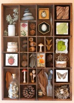 This is an Assemblage of found woodland and forest items. It is all contained in a vintage wood compartment box probably used for wood type The post Found Objects Assemblage Art Organized Nature appeared first on Easy Crafts. Instagram Challenge, Arte Assemblage, Nature Table, Displaying Collections, Nature Crafts, Nature Decor, Vintage Wood, Vintage Crafts, Vintage Art