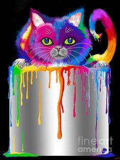Boyalı kedi