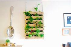 vertikaler Garten Anleitung aus Paletten vertikale Begrünung Wanddeko