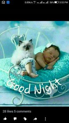 Good Night Prayer, Good Night Blessings, Good Night Sweet Dreams, Good Night Image, Good Morning Good Night, Day For Night, Good Morning Images, Night Time, Good Night Greetings