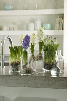 Zet verschillende vaasjes met vrolijke bloembollen bijelkaar of op een dienblad