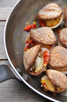 Sea Almonds