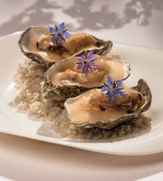 Oysters, Panna Cotta, Pudding, Ethnic Recipes, Desserts, Food, Mussels, Sea Shells, Seafood