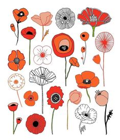 Who doesn't love a poppy? // from my book 20 Ways to Draw a Tulip & 44 Other Fabulous Flowers, available in my Etsy shop & wherever books are sold // lisacongdon.etsy.com