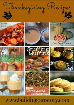 Thanksgiving Recipe Round-Up - #thanksgiving #recipes