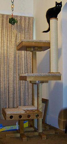 Cat Power Tower Testimonials | Customer Cat Tree Reviews