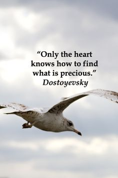 """""""Only the heart knows how to find what is precious."""" Dostoyevsky  -- Explore journey quotes, both ancient and modern, at http://www.examiner.com/article/travel-a-road-of-literate-quotes-about-the-journey"""
