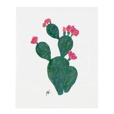 Flowering Cacti V Print – Our Heiday