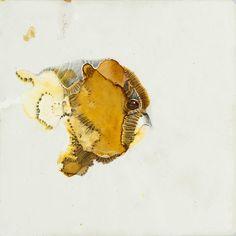 Beatrice Richter:  Abstract Animal # 42. Tusche und Graphit auf Papier. #Zeichnung #Urtier #Phantasiegestalt #intuitivesZeichnen #Tier #Abstraktion #startyourart #beatricerichter www.startyourart.de