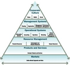 issues in organizational behavior essays