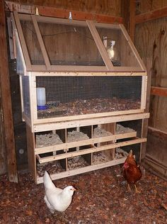 Brooder box in coop with nesting box below. I just built a permanent brooder box in my coop, and I was in love with it, until I saw the great use of vertical real estate used here. I am certain I will dismantle it eventually so I can raise it up and add nests below. I put my chicks in the coop brooder at 4 weeks and keep a lamp on them for an additional two weeks. This design Makes so much sense. <3 this idea to the moon and back.