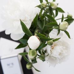 Good morning and Happy week ! . . . #pictoftheday#flowers#peonies# #happyday#instaday#love#fun#monday#spring #everyday#everydaystories#whiteinterior #white #mondaymood