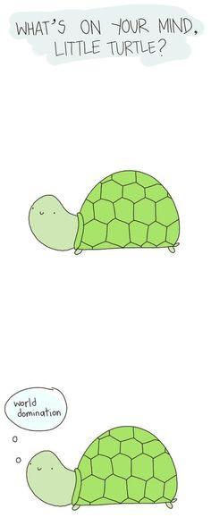 Funny Turtle World Domination Cartoon