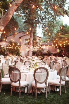 Lights in garden wedding